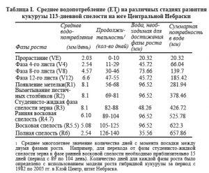 srednee-vodopotreblenie-et-na-razlichnykh-stadiyakh-razvitiya-kukuruzy-113-dnevnoy-spelosti