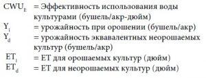effektivnost-ispolzovaniya-vody-kulturami-cwue
