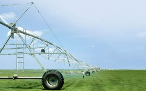 irrigacionnaya-sistema